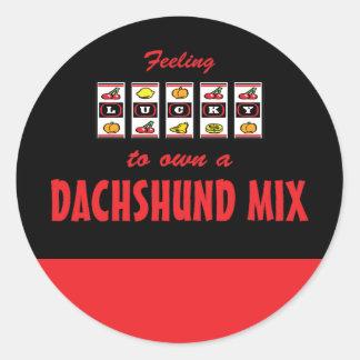 Lucky to Own a Dachshund Mix Fun Dog Design Round Stickers
