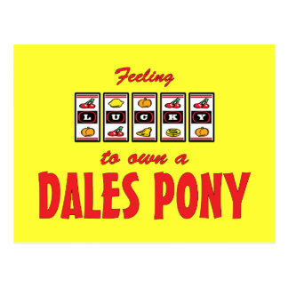 Lucky to Own a Dales Pony Fun Design Postcard