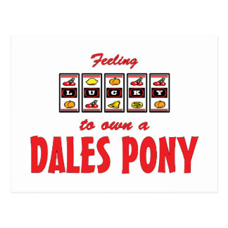 Lucky to Own a Dales Pony Fun Design Post Cards