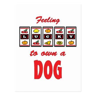 Lucky to Own a Dog Fun Design Postcard