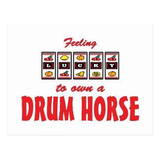 Lucky to Own a Drum Horse Fun Design Postcard