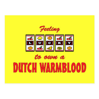 Lucky to Own a Dutch Warmblood Fun Horse Design Post Cards