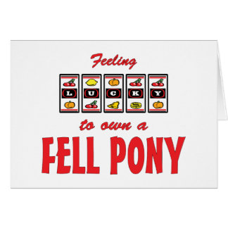 Lucky to Own a Fell Pony Fun Design Cards