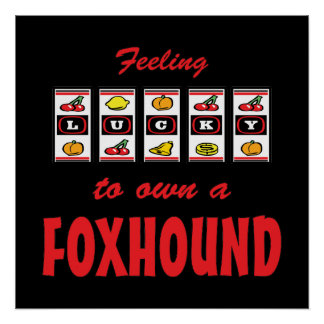 Lucky to Own a Foxhound Fun Dog Design Posters