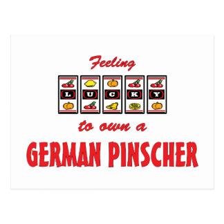 Lucky to Own a German Pinscher Fun Dog Design Postcard