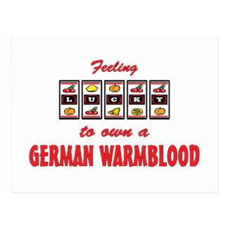 Lucky to Own a German Warmblood Fun Horse Design Postcard