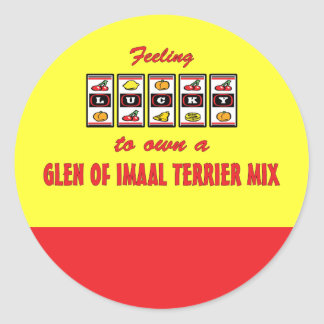 Lucky to Own a Glen of Imaal Terrier Mix Classic Round Sticker