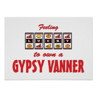 Lucky to Own a Gypsy Vanner Fun Horse Design Poster