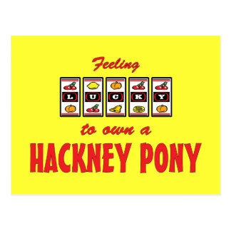 Lucky to Own a Hackney Pony Fun Design Postcard