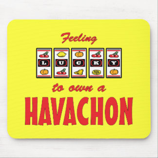 Lucky to Own a Havachon Fun Dog Design Mouse Pad