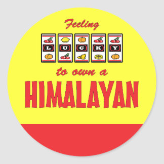 Lucky to Own a Himalayan Fun Cat Design Classic Round Sticker