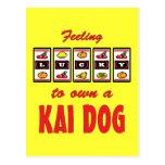 Lucky to Own a Kai Dog Fun Dog Design Postcard