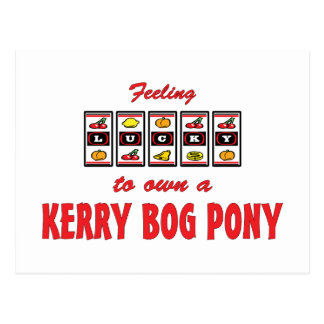Lucky to Own a Kerry Bog Pony Fun Design Postcard