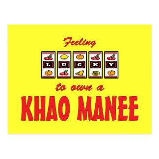 Lucky to Own a Khao Manee Fun Cat Design Postcard