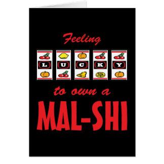 Lucky to Own a Mal-Shi Fun Dog Design Greeting Card