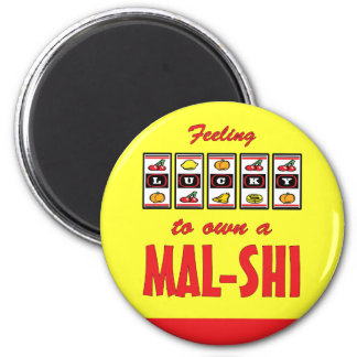 Lucky to Own a Mal-Shi Fun Dog Design 2 Inch Round Magnet