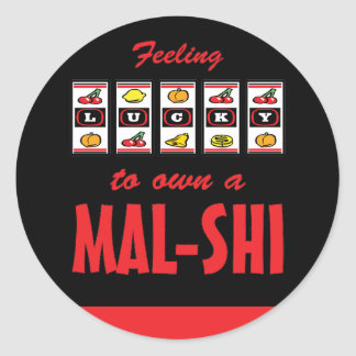 Lucky to Own a Mal-Shi Fun Dog Design Classic Round Sticker