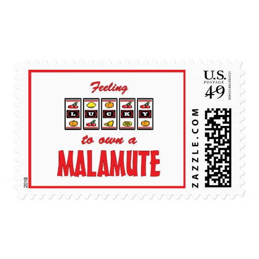 Lucky to Own a Malamute Fun Dog Design Postage
