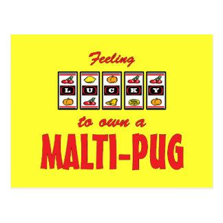 Lucky to Own a Malti-Pug Fun Dog Design Postcard