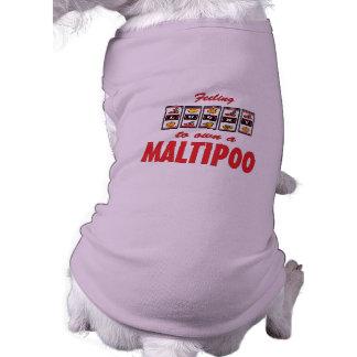Lucky to Own a Maltipoo Fun Dog Design Dog Tee Shirt