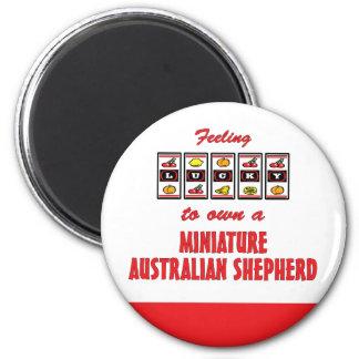 Lucky to Own a Miniature Australian Shepherd Magnet