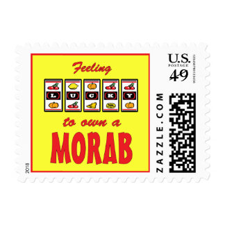 Lucky to Own a Morab Fun Horse Design Postage Stamp