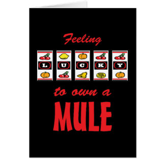Lucky to Own a Mule Fun Design Card