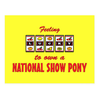 Lucky to Own a National Show Pony Fun Design Postcard