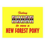 Lucky to Own a New Forest Pony Fun Design Postcard