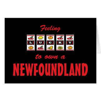 Lucky to Own a Newfoundland Fun Dog Design Greeting Card