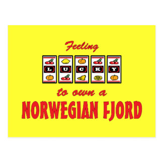 Lucky to Own a Norwegian Fjord Fun Horse Design Post Cards