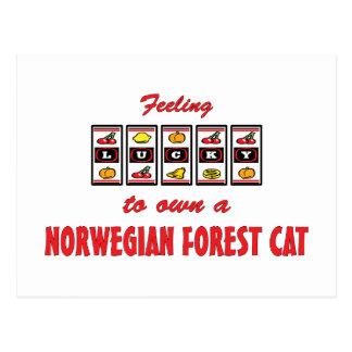 Lucky to Own a Norwegian Forest Cat Fun Cat Design Postcard