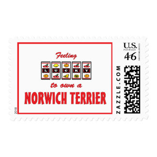 Lucky to Own a Norwich Terrier Fun Dog Design Postage Stamp