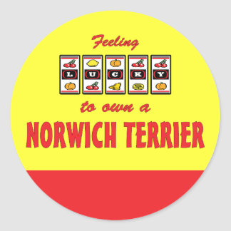 Lucky to Own a Norwich Terrier Fun Dog Design Sticker
