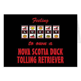 Lucky to Own a Nova Scotia Duck Tolling Retriever Cards