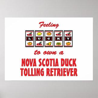 Lucky to Own a Nova Scotia Duck Tolling Retriever Print