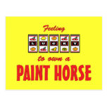 Lucky to Own a Paint Horse Fun Design Postcards