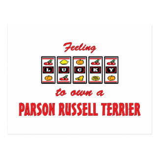 Lucky to Own a Parson Russell Terrier Fun Design Postcard