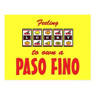 Lucky to Own a Paso Fino Fun Horse Design Postcard