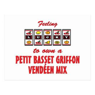 Lucky to Own a Petit Basset Griffon Vendéen Mix Postcard