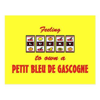 Lucky to Own a Petit Bleu de Gascogne Fun Design Postcard