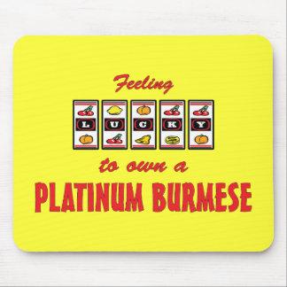 Lucky to Own a Platinum Burmese Fun Cat Design Mouse Pad