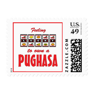 Lucky to Own a Pughasa Fun Dog Design Postage Stamps