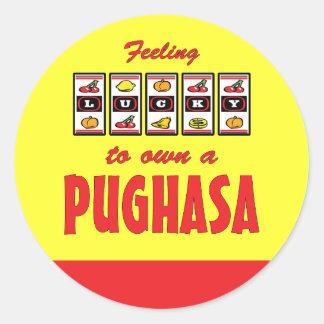 Lucky to Own a Pughasa Fun Dog Design Round Sticker