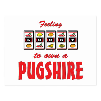 Lucky to Own a Pugshire Fun Dog Design Postcard