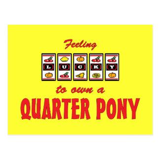 Lucky to Own a Quarter Pony Fun Design Postcard