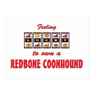 Lucky to Own a Redbone Coonhound Fun Dog Design Postcard