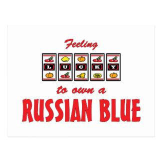 Lucky to Own a Russian Blue Fun Cat Design Postcard