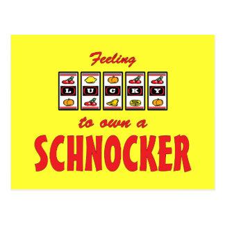 Lucky to Own a Schnocker Fun Dog Design Postcard
