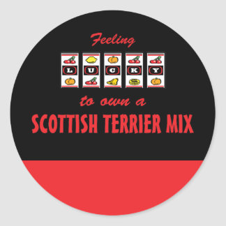 Lucky to Own a Scottish Terrier Mix Fun Dog Design Classic Round Sticker